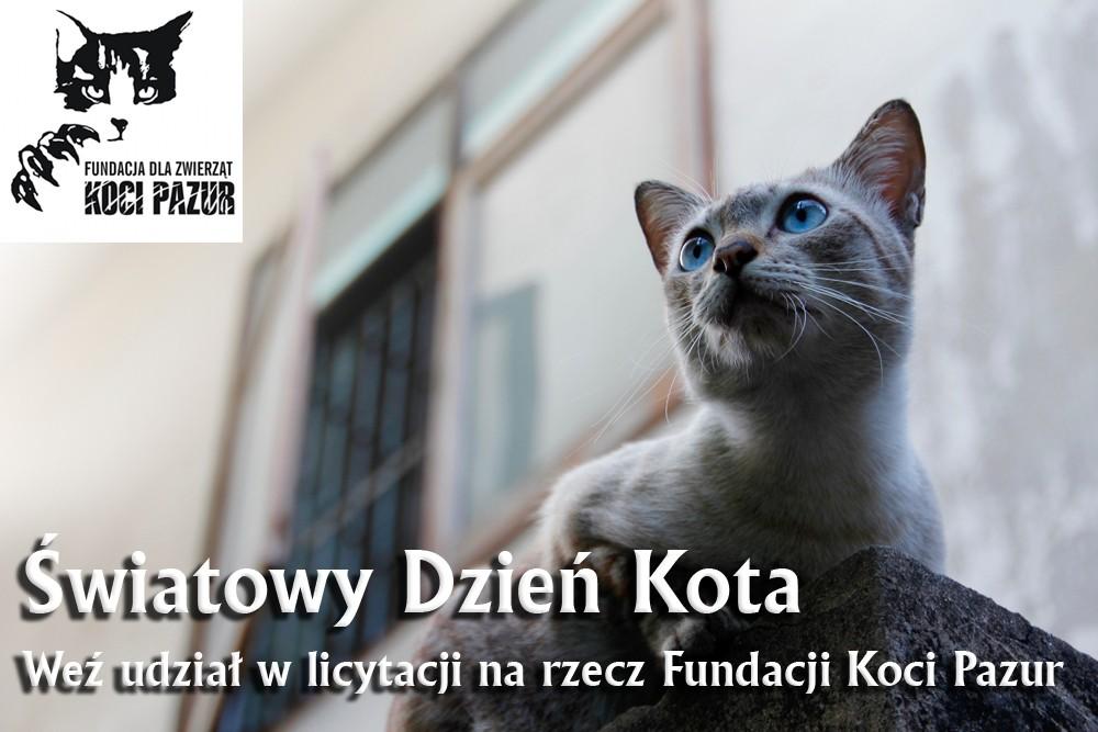 Thai Smile - koty - aukcja allegro - facebook