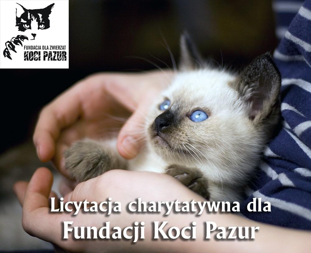Thai Smile - aukcja na rzecz Koci Pazur